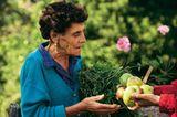 Obst für die Nachwelt - Bild 2