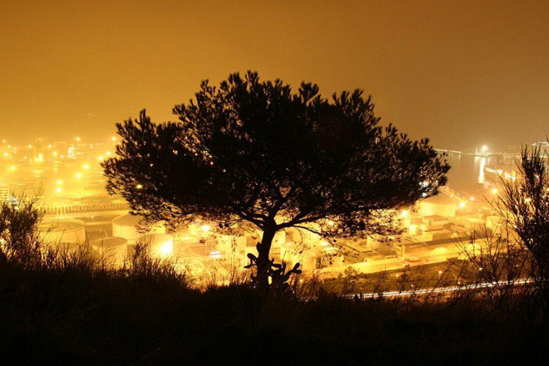 Das User-Foto des Tages - Oktober 2007 - Bild 5