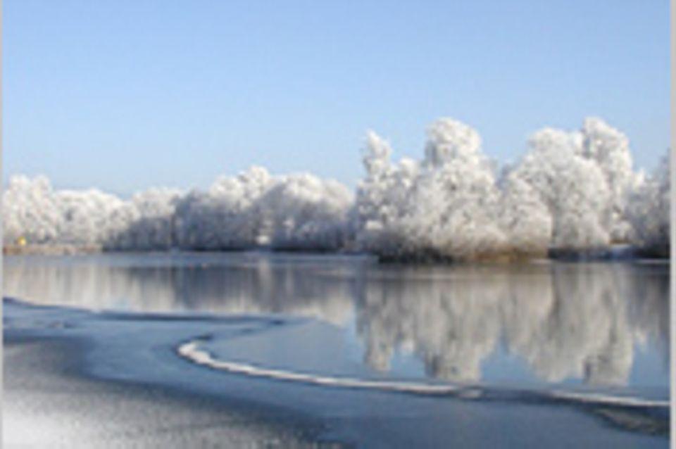 Das User-Foto des Tages - November 2007
