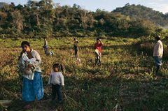 Bolivien: Aufbruch ins gelobte Land - Bild 2