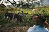 Bolivien: Aufbruch ins gelobte Land - Bild 8