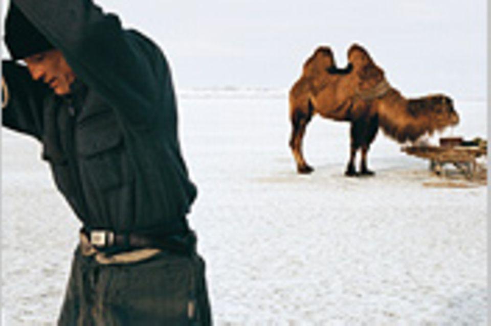 Kasachstan: Fischzug mit Kamel