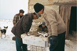 Kasachstan: Fischzug mit Kamel - Bild 4