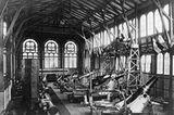 Industrielle Revolution: Fotoshow: Krupps Fabrikstadt - Bild 11