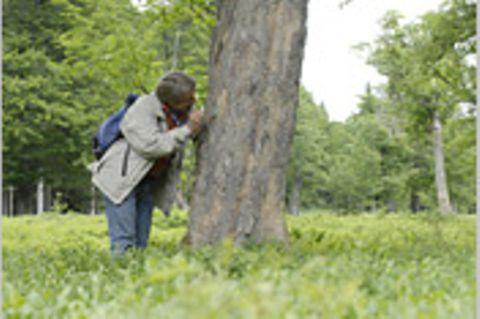 10. GEO-Tag im Nationalpark Bayerischer Wald