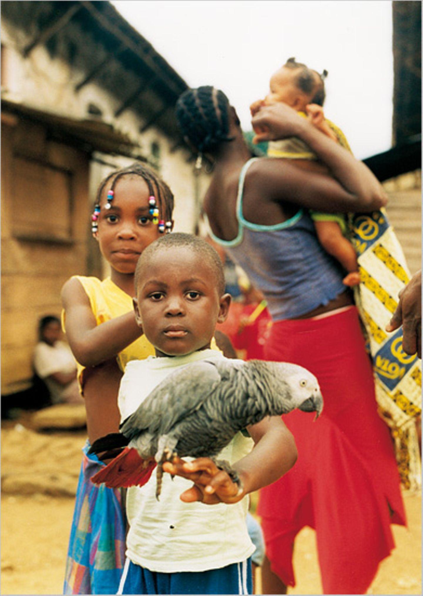 São Tomé & Príncipe: Inseln der Illusionen - Bild 6