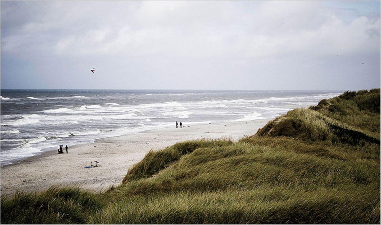 Das User-Foto des Tages - August 2008