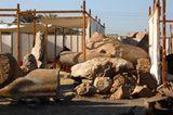 Altes Ägypten: Memnon in Not - Bild 9