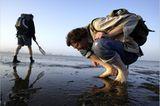 Fotogalerie: Zehn Jahre GEO-Tag der Artenvielfalt - Bild 9