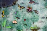 Fotoshow: GEO-Tag 2008 – Schüler für die Artenvielfalt - Bild 3