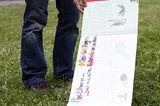 Fotoshow: GEO-Tag 2008 – Schüler für die Artenvielfalt - Bild 7