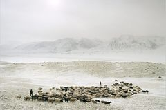 Ethnologie: Nordafghanistan: Ein Winter bei den Pamir-Kirgisen