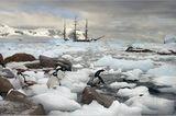 Antarktis: Unter Segeln zum Südpol - Bild 4