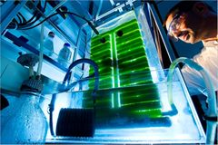 Forschung: Werkstoff Licht