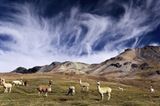 Abenteuerreise: Zwei Jahre Südamerika - Bild 4