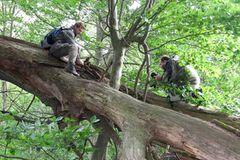 11. GEO-Tag der Artenvielfalt im Wildtierland - Bild 3