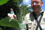 11. GEO-Tag der Artenvielfalt im Wildtierland - Bild 6