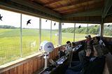Fotogalerie: Fotogalerie: 11. GEO-Tag der Artenvielfalt - Bild 5