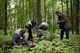 Fotogalerie: Fotogalerie: 11. GEO-Tag der Artenvielfalt - Bild 11