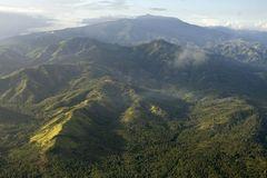 Fotoshow: Philippinenadler - Bild 2