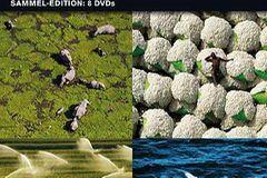 """""""Die Erde von oben"""" auf DVD"""