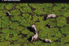 """""""Die Erde von oben"""" auf DVD - Bild 2"""