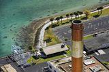 Fotoshow: Florida-Seekühe - Bild 7