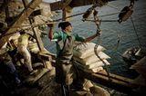 Fotoshow: Guano-Gewinnung in Peru - Bild 5