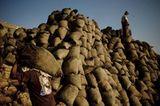 Fotoshow: Guano-Gewinnung in Peru - Bild 9