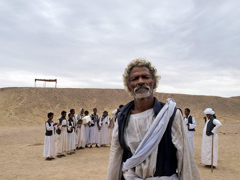 Ägypten: Fotogalerie: Die Wüste lebt