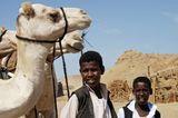 Ägypten: Fotogalerie: Die Wüste lebt - Bild 5