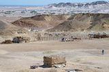 Ägypten: Fotogalerie: Die Wüste lebt - Bild 6