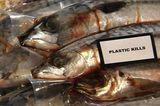 Filmtipp: Plastic Planet - Bild 7