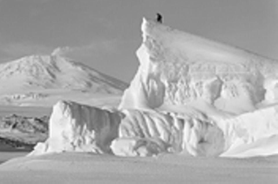 Fotogalerie: Die Eroberung des Südpols