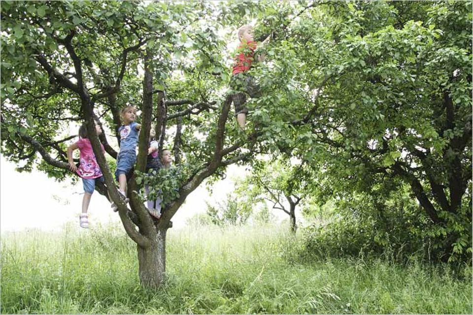 Kinder, raus in die Natur!
