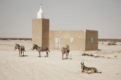 Moschee in Mauretanien