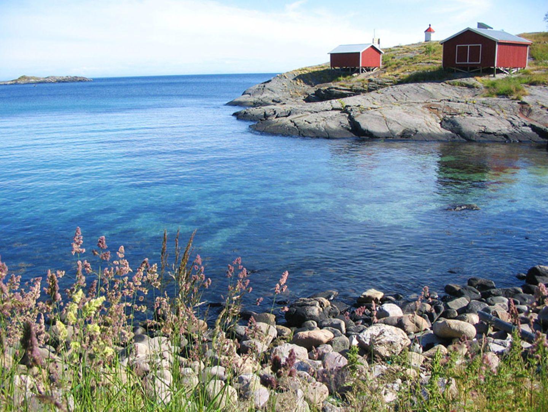 Norwegen: Hochseeangeln für Anfänger
