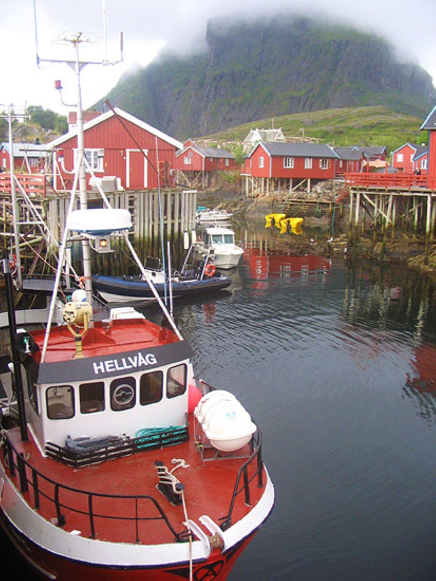 Norwegen: Hochseeangeln für Anfänger - Bild 6