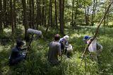 13. GEO-Tag der Artenvielfalt im Löcknitztal