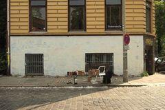 Graffiti: Graffiti - Kunst aus der Dose
