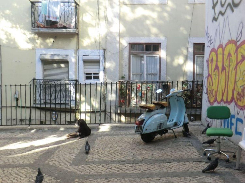 Max (Lisbon): Max (Lisbon)