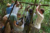 Artenschutz: Wo darf der Jaguar leben? - Bild 12
