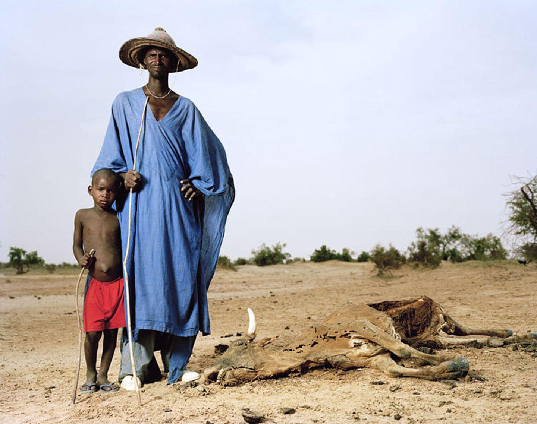 Fotogalerie: Fotogalerie: Schicksale des Klimawandels