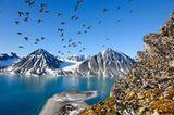 Faszination Arktis