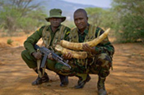 Fotogalerie: Fotogalerie: Von Wilderern zu Naturschützern