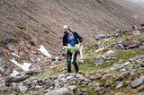 Mit 2000 Schafen über die Alpen - Bild 12