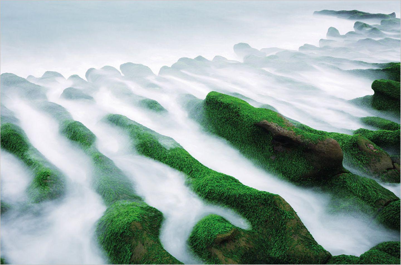 Fotogalerie: 100 grüne Lösungen - Bild 2