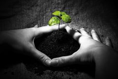 Fotogalerie: 100 grüne Lösungen - Bild 4