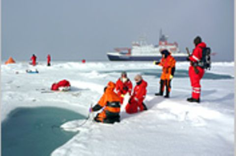 Fotogalerie: Eisbrecher-Expedition in die Arktis