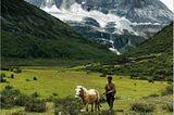 Fotogalerie: Spirituelle Reise zum Himalaya - Bild 3